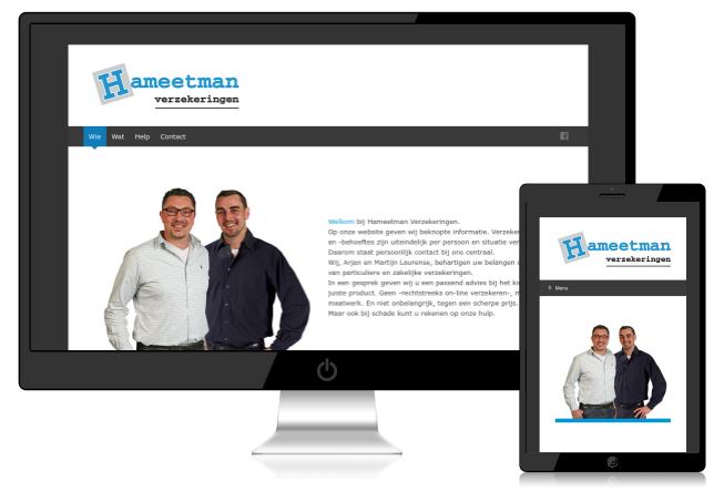 voorbeeld van website hameetman