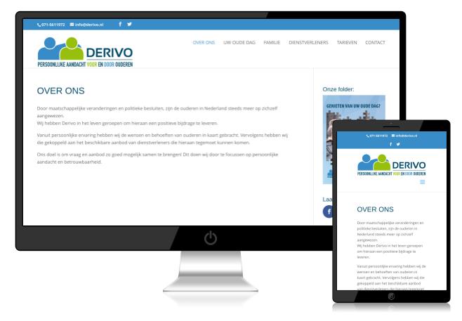 voorbeeld van website derivo